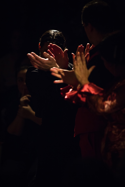 FlamencoFestivalZH2016_159