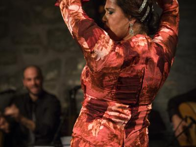 FlamencoFestivalZH2016_106