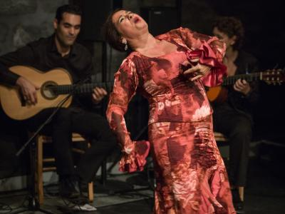 FlamencoFestivalZH2016_168