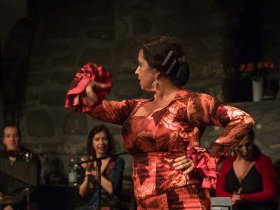 FlamencoFestivalZH2016_098
