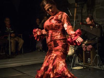 FlamencoFestivalZH2016_097