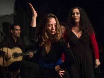 FlamencoFestivalZH2016_175