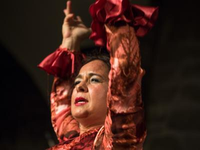 FlamencoFestivalZH2016_113