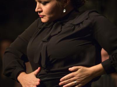 FlamencoFestivalZH2016_119