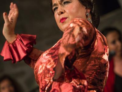 FlamencoFestivalZH2016_096