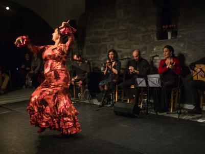 FlamencoFestivalZH2016_104