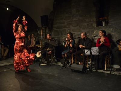 FlamencoFestivalZH2016_103